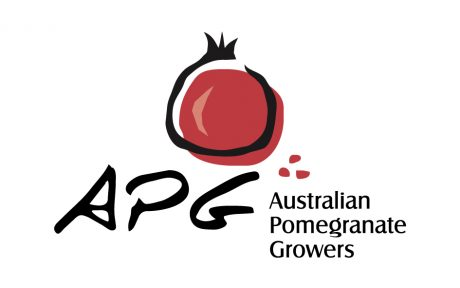 APG logo design melbourne studio rosinger